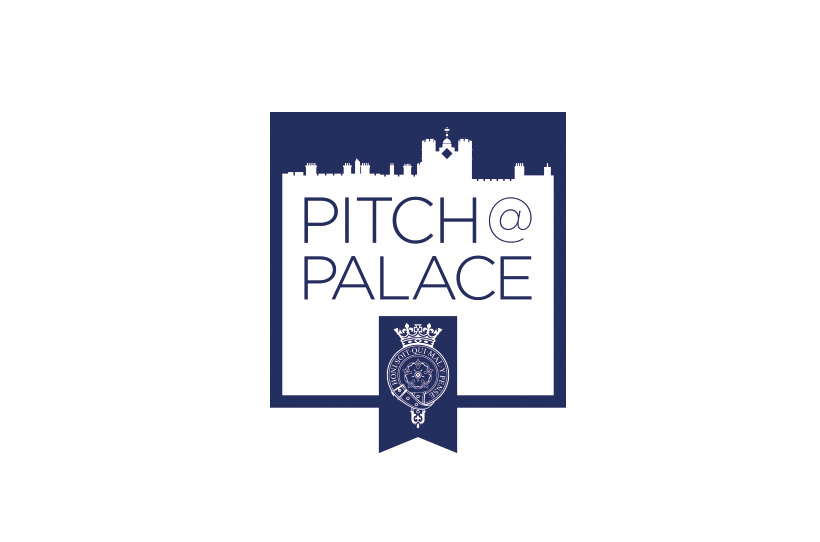 Pitch at Palace