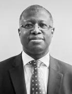 Professor Frank Chingwundoh